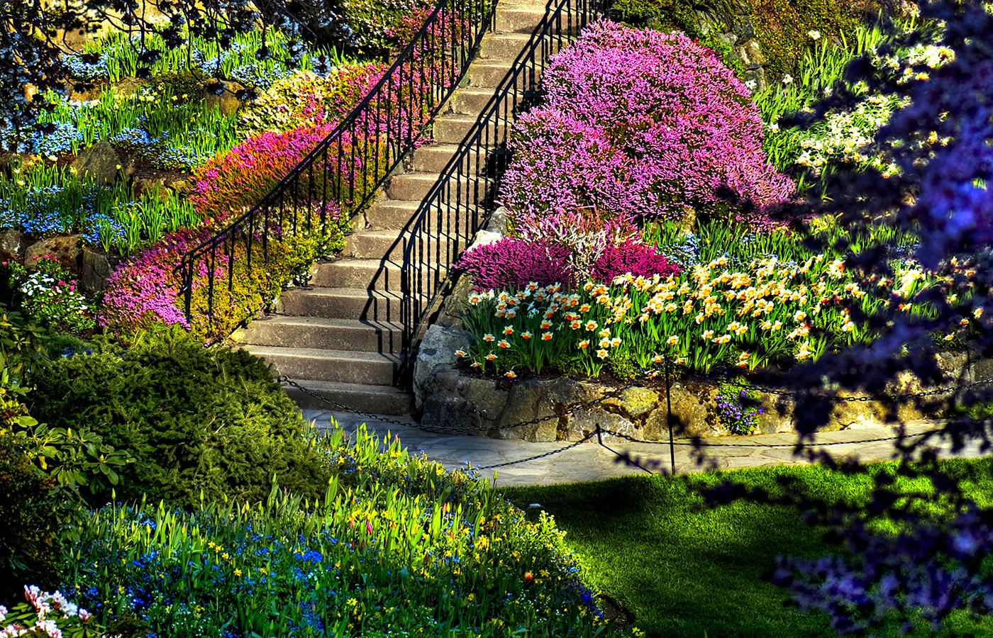 Cum să-ţi îngrijeşti grădina primăvara